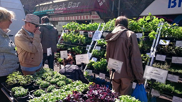 Weekend street markets in Brixton - Granville Market Space and Farmers' Market, Station Road