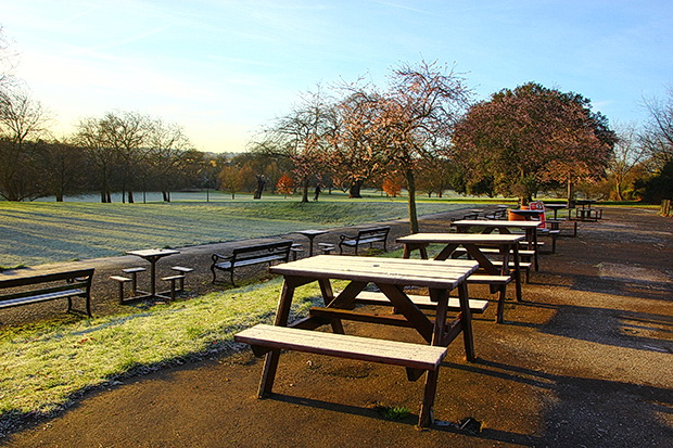 In photos: Chilly early morning scenes around Brockwell park in south London, January 2017