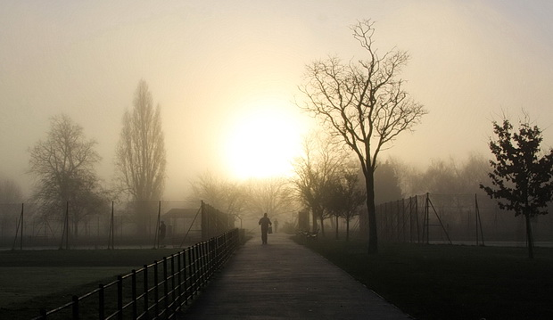 Beautiful photos of Brockwell Park in a spectacular early morning fog, December 2016