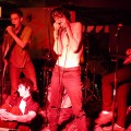 Fat White Family to headline Palestinian benefit at the Queen's Head, Thurs 24th July