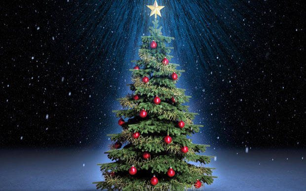 The Brixton Buzz guide to where you can buy a real christmas tree ...