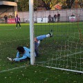 Dulwich Hamlet see off Leatherhead 3-0 in FA Trophy match, Saturday 2nd November 2013