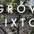 Planning app submitted for Grow Brixton food project