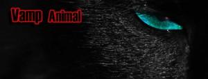 Vamp presents Animal @ Club 414 | London | United Kingdom
