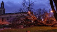 Yesterday, we reported on the old tree that had come crashing down to the ground in the historicSt Matthew's churchyard in central Brixton. Avictim of a night of fiercewinds, the […]