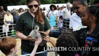 The wonderful Lambeth Country Show will be back in July, and Lambeth has released some details of what's in store for this year's weekend-long free event.