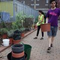Brixton's Barrier Block gets a green makeover by the Edible Bus Stop crew