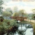 Brockwell Park in Victorian and Edwardian postcards: The Lake/Duck Pond