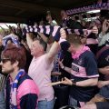 Dulwich Hamlet: join the coach fleet going to Braintree for the big FA Trophy game! Sat 4th Feb