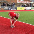 Dulwich Hamlet grab all three points on Worthing's wobbly red and green fake pitch