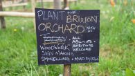 With Brixton's new orchard starting to take shape near the centre of town, we went along to see how much progress has been madesince our visit at the beginning of […]